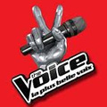 The Voice : la plus belle voix - The Voice : Emission du 28 avril 2012